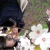 tutor a lecce - Maria Celeste
