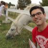 tutor a caltagirone - Davide